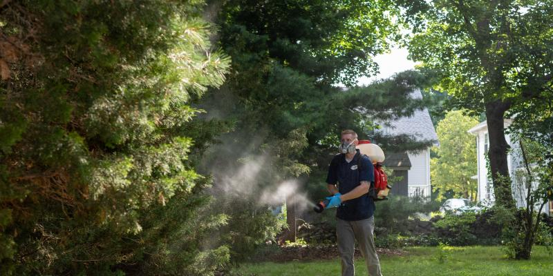 Exterminator from Clancy Bros Pest Control using a fogging machine in the backyard of a home in order to get rid of outdoor pests.
